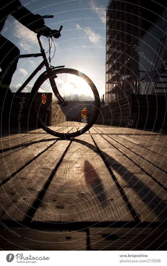oh sunny sunny day Cycling 1 Human being Driving Bicycle Cycle path Footbridge Central perspective In transit Colour photo Exterior shot Day Silhouette Sunlight