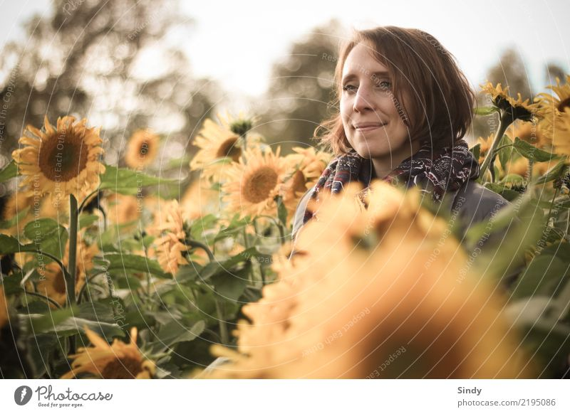 Sunflower1 Human being Feminine Young woman Youth (Young adults) Woman Adults Head 18 - 30 years 30 - 45 years Nature Plant Autumn Beautiful weather Leaf