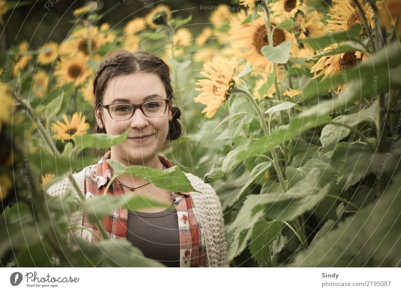 Sunflower2 Human being Feminine Girl Young woman Youth (Young adults) Body 1 13 - 18 years Nature Landscape Plant Flower Field Brunette Braids Friendliness