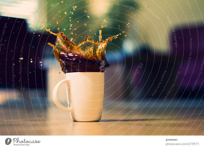 Cookie Splash Food Beverage Hot drink Coffee Cup Mug Style Design Living room Exceptional Delicious Funny Positive Crazy Emotions Moody Colour photo