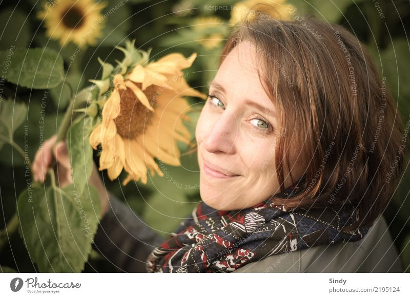 Sunflower4 Human being Feminine Young woman Youth (Young adults) Woman Adults Head 1 18 - 30 years 30 - 45 years Plant Leaf Blossom Sunflower field Garden Field