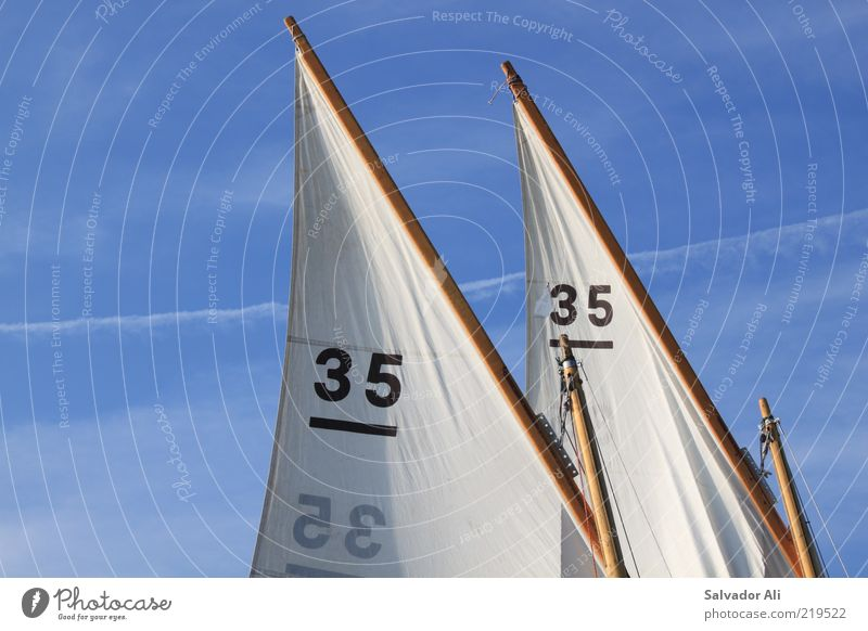 Sky Summer Environment Sports Freedom Air Wind Leisure and hobbies Beginning Trip In pairs Sports team Team Sailing Parallel Tradition