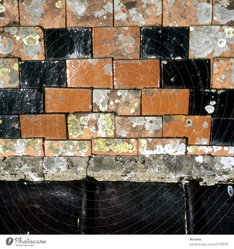 Red Black Gray Architecture Authentic Roof Simple Derelict Brick Decline Manmade structures Historic Ornament Section of image Clay Roofing tile