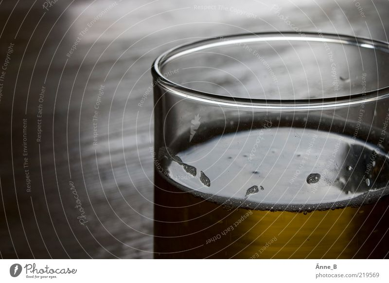 Stale beer tastes stale. Food Beverage Alcoholic drinks Beer Glass Fluid Foam Reflection Brown Partially visible Section of image Beer glass Colour photo