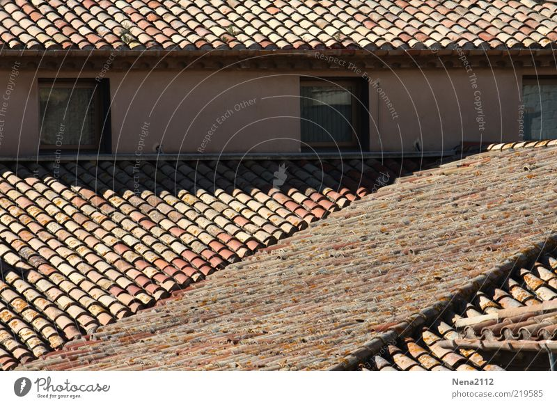 Over the rooftops.... Style Living or residing House (Residential Structure) Old Esthetic Roof Window Roofing tile Gable Eaves Attic story Southern