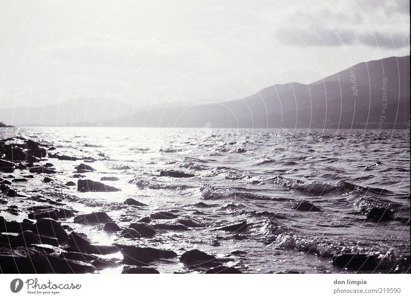 lough corrib Far-off places Sun Island Waves Landscape Weather Beautiful weather Lakeside Lough Corrib Large Idyll Environment Analog Black & white photo