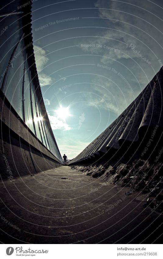 rooftop Human being Masculine Sky Sun Esthetic Blue Moody Roof Window Colour photo Exterior shot Day Fish eyes Rear view Lanes & trails Going