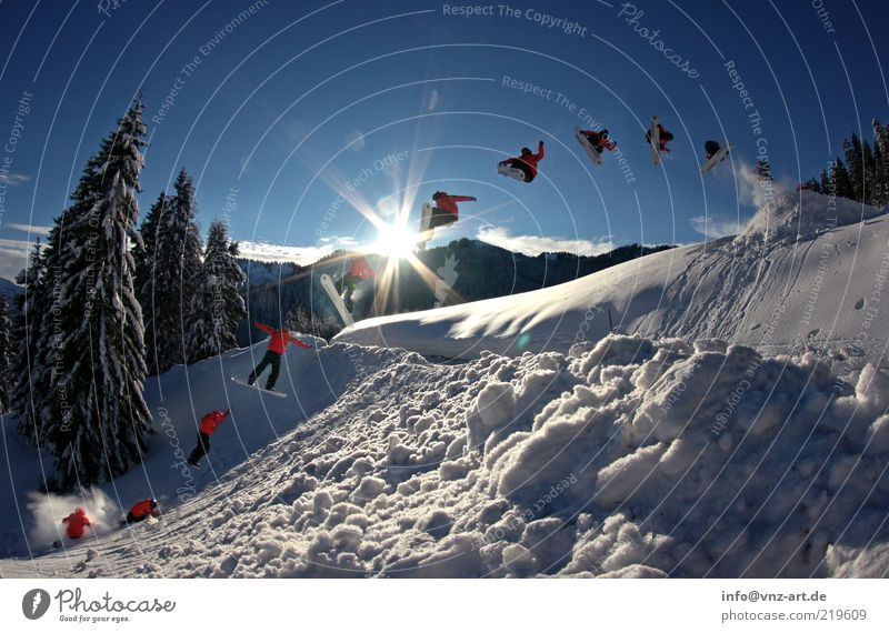 Sky Blue Sun Winter Cold Snow Style Jump Leisure and hobbies Action Crazy Tall Departure Brave Row Fir tree