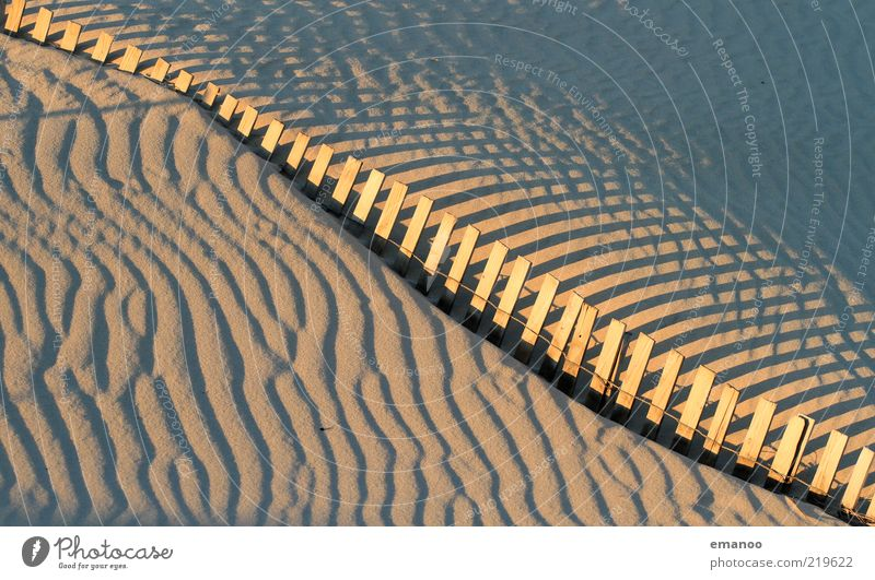 Nature Summer Beach Yellow Wood Wall (barrier) Warmth Sand Landscape Line Wind Leisure and hobbies Tracks Pattern Fence Beach dune