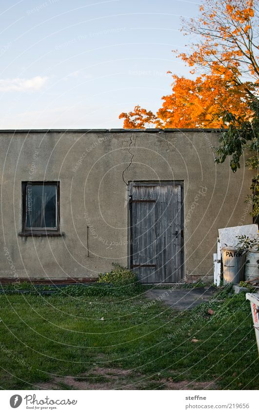 sheds Sky Autumn Beautiful weather Tree Meadow House (Residential Structure) Wall (barrier) Wall (building) Door Poverty Authentic Trash Barn Twilight