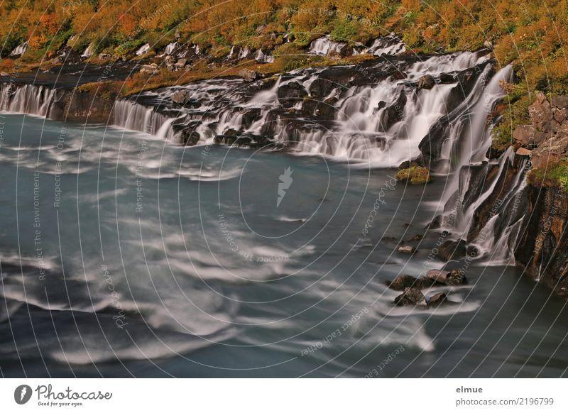 Hraun's fossil Nature Landscape Elements Water Rock Coast Island Iceland Hvítá Reykholt West Iceland Waterfall Torrents of water To fall Threat Famousness
