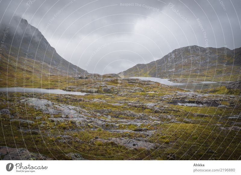Rainy mood in mountain landscape in Norway, grey, wet Nature Elements Clouds Bad weather Mountain Fjeld Dark Wet Gloomy Wild Sadness Concern Grief Loneliness