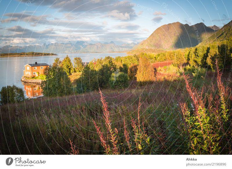 Wooden house in Abendidylle, Scandinavia, Lofoten, Willowherb Calm Vacation & Travel Summer vacation Environment Nature Landscape Horizon Sunrise Sunset