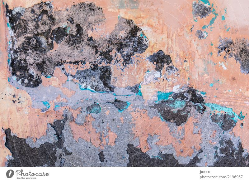 mural painting Wall (barrier) Wall (building) Old Hideous Blue Gray Pink Black Senior citizen Surrealism Decline Transience Change Plaster Colour photo