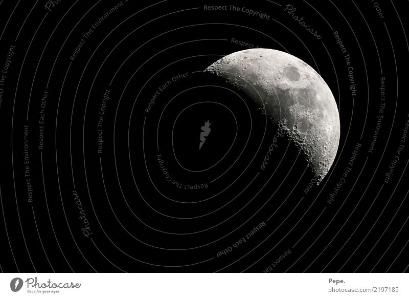 moon Nature Sky Moon Sleep Contentment Wisdom Smart Half moon Horizon Colour photo Night Light Shadow