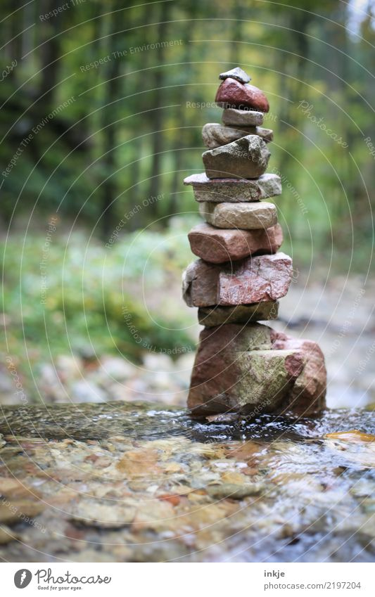 stone tower Environment Nature Spring Summer Autumn Beautiful weather Forest Brook Harz Stone Pebble Stack Tower Tall Wet Emotions Moody Caution Serene Calm