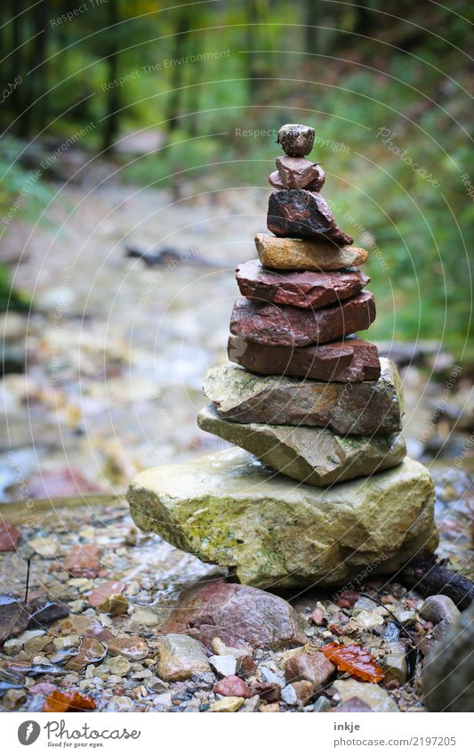 Stone tower in the Harz Mountains Environment Nature Landscape Spring Summer Autumn Forest River bank Brook stone tower Towering Stack Stand Tall Contentment
