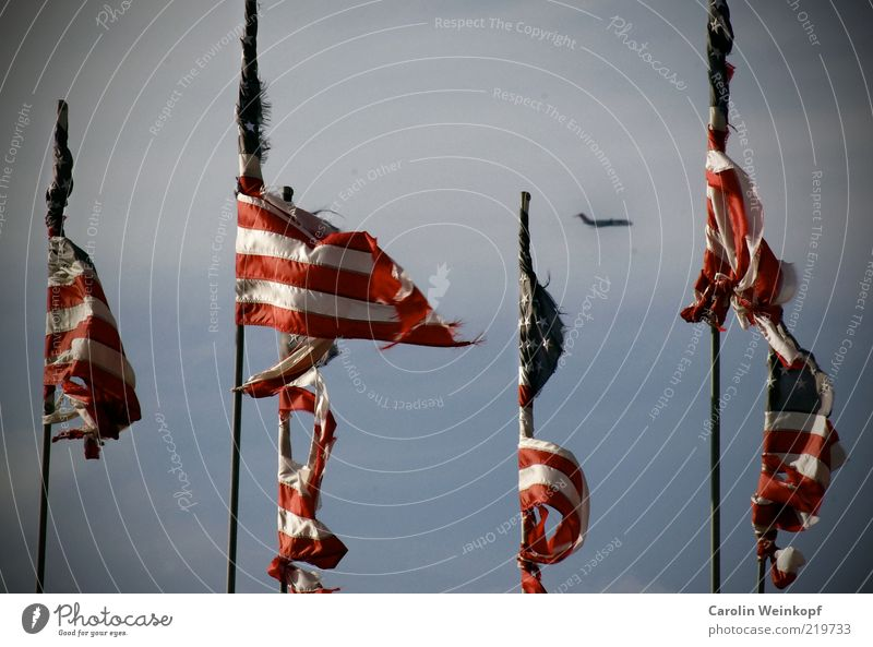 Land of the free. USA North America Deserted Transport Means of transport Traffic infrastructure Airplane Aviation Passenger plane Sign Flag Freedom Movement