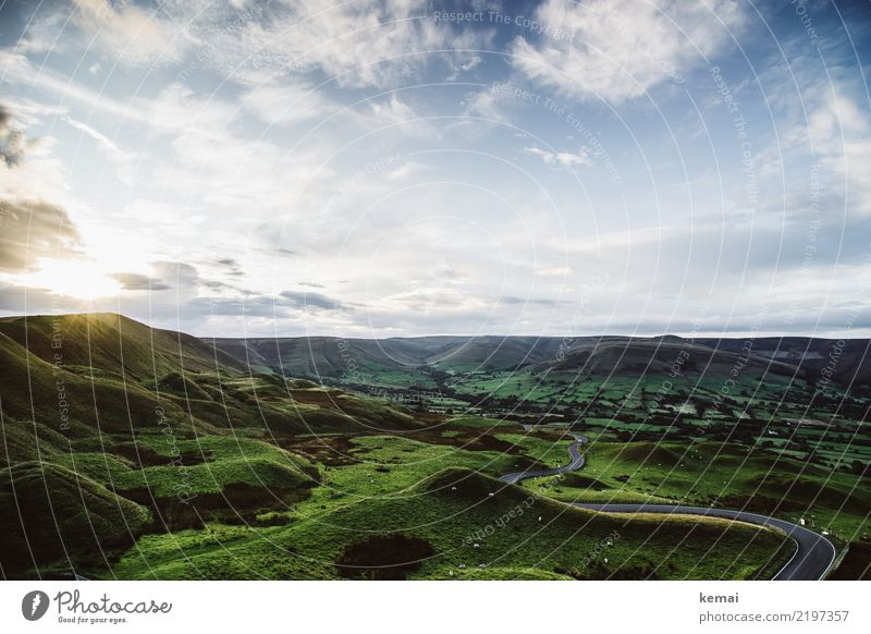 Hills and sheep and a perfect evening Harmonious Well-being Contentment Senses Relaxation Calm Leisure and hobbies Vacation & Travel Trip Adventure