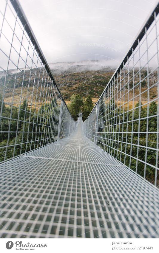 A bridge is a bridge Vacation & Travel Tourism Trip Mountain Hiking Autumn Weather Bad weather Alps Deserted Bridge Brown Yellow Gray Green White