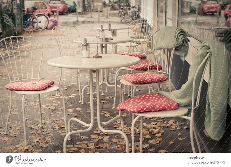 mushroom season Lifestyle Chair Relaxation Services Autumn Autumn leaves Café Blanket Spotted Subdued colour Exterior shot Deserted Day Central perspective
