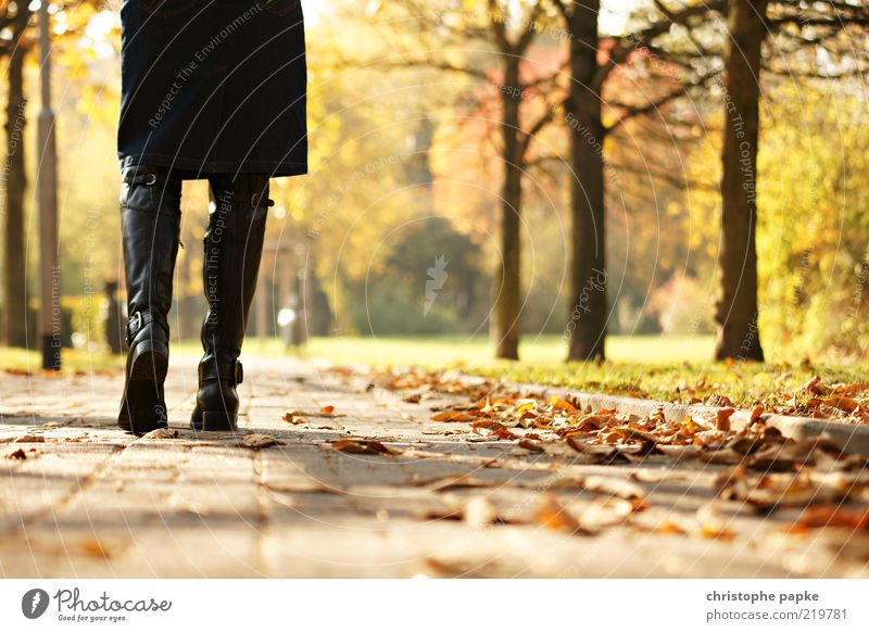 Going for a walk Feminine Legs 1 Human being Nature Autumn Tree Leaf Park Skirt Boots Relaxation Sadness Loneliness Colour photo Exterior shot Day