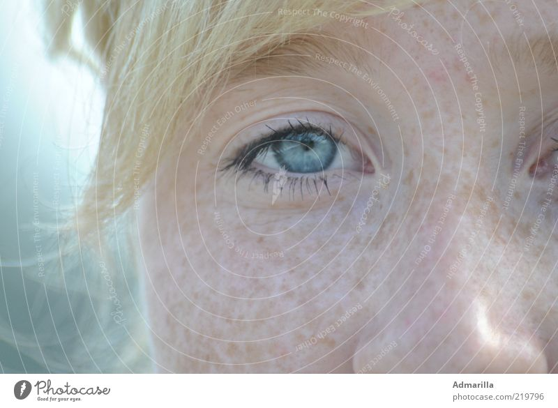 sky blue Human being Feminine Young woman Youth (Young adults) Skin Head Face Eyes Nose 1 Beautiful weather Discover Looking Exceptional Blonde Cool (slang)