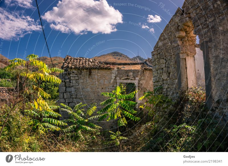 Old Perithia Nature Plant Sky Clouds Summer Grass Bushes Wild plant Mountain Corfu Village Deserted House (Residential Structure) Ruin Building Wall (barrier)