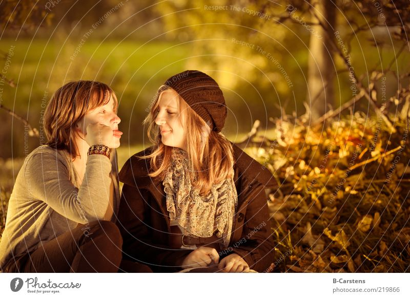 girlfriends Joy Human being Friendship Youth (Young adults) Life 2 Nature Earth Sunlight Autumn Tree Grass Bushes Leaf Forest Smiling Brash Together Emotions
