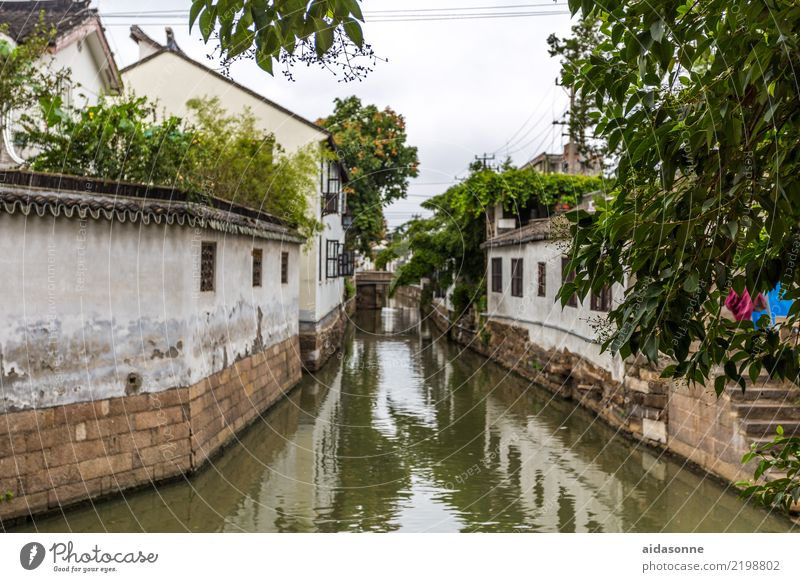 Channel in Xitang China Asia Town Old town Deserted House (Residential Structure) Beautiful Wanderlust Life Moody Colour photo Exterior shot Day Long shot