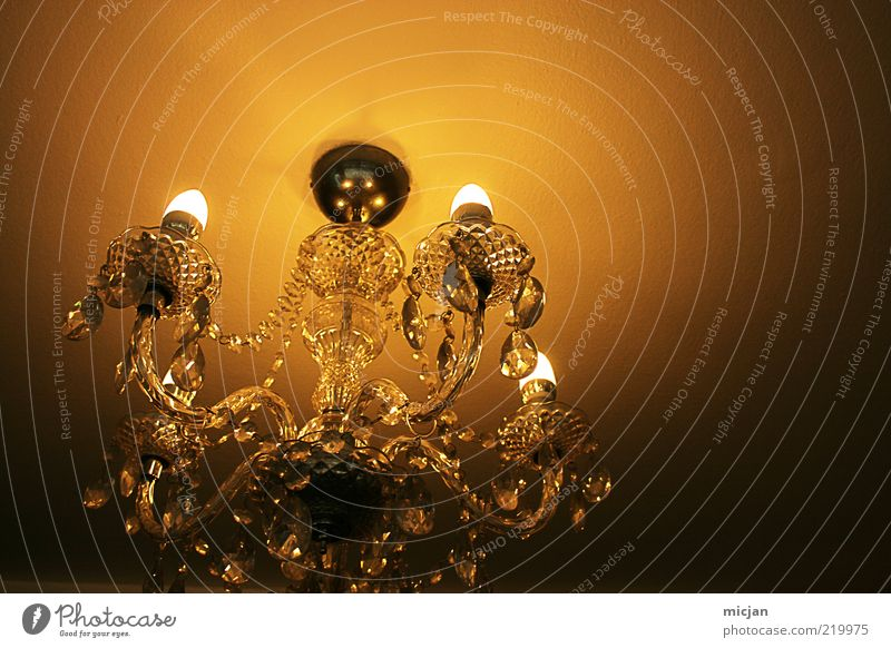 Beautiful Old Lamp Dark Style Bright Glass Romance Decoration Interior design Illuminate Hang Noble Electric bulb Ceiling