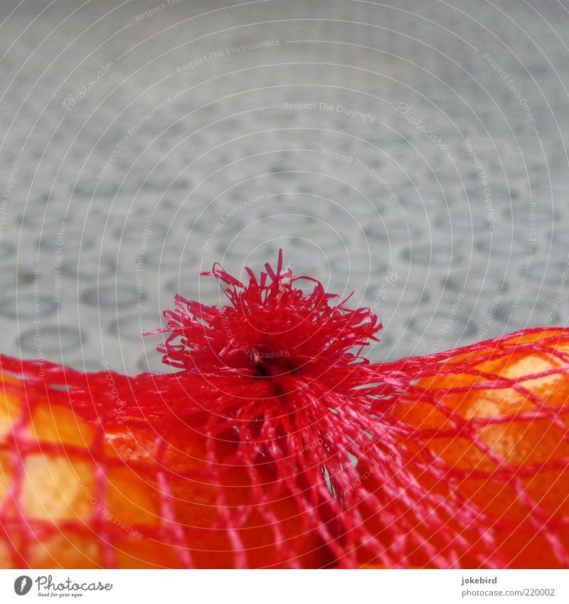 Net stocking for orange peel skin Food Fruit Tangerine Citrus fruits Vegetarian diet Red Orange Gray Orange peel Colour photo Exterior shot Deserted