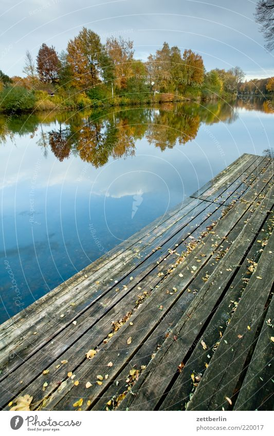 Nature Water Calm Loneliness Far-off places Autumn Freedom Wood Park Landscape Romance Leisure and hobbies Longing Idyll Footbridge Jetty