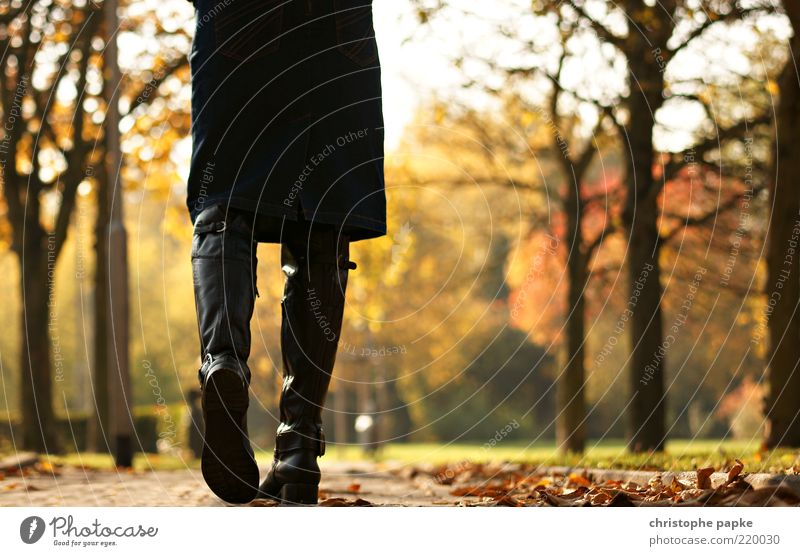 Human being Nature Tree Leaf Loneliness Far-off places Relaxation Autumn Feminine Sadness Lanes & trails Park Legs Moody Going Future
