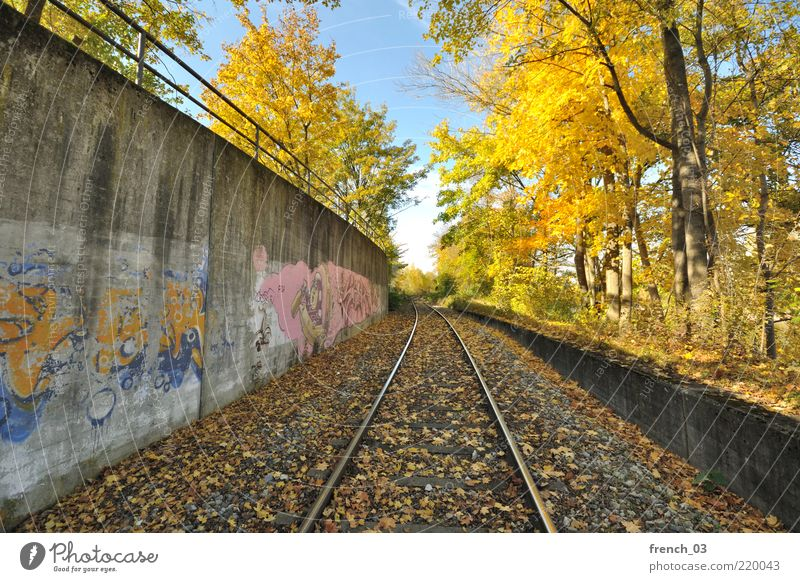 Nature Sky Tree Blue Leaf Yellow Colour Cold Autumn Wall (barrier) Graffiti Moody Environment Bushes Railroad tracks Illuminate