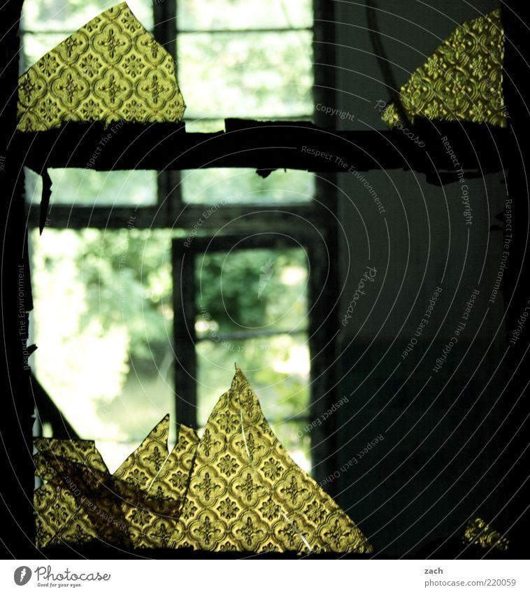 Old Green House (Residential Structure) Yellow Dark Window Dirty Glass Door Gloomy Broken Tile Decline Hut Ruin Window pane