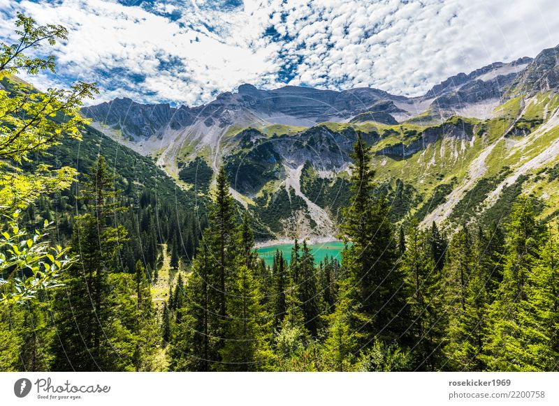 alpine panorama Vacation & Travel Tourism Trip Adventure Far-off places Freedom Summer Summer vacation Mountain Hiking Clouds Rock Alps Deserted Relaxation