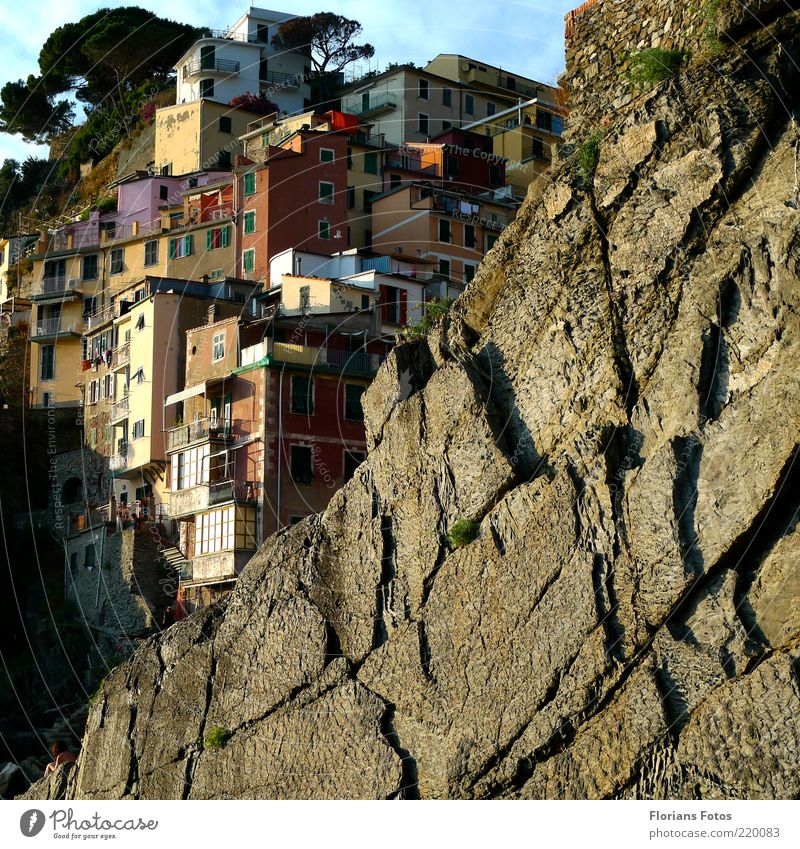 Houses in the rock Exotic Vacation & Travel Tourism Summer Summer vacation Cinque Terre Italy Italian Europe Village Fishing village