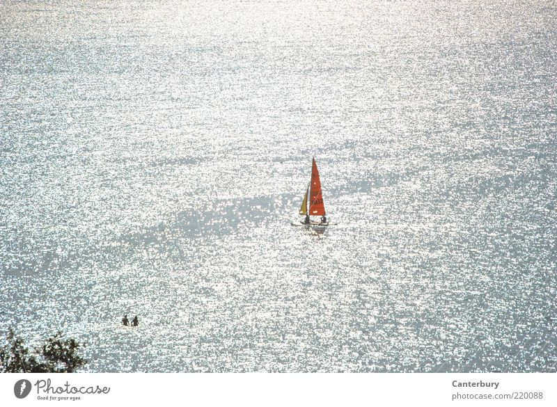 Water Summer Vacation & Travel Lake Watercraft Moody Bright Together Waves Glittering Swimming & Bathing Joie de vivre (Vitality) Silver Beautiful weather Sail Sailboat