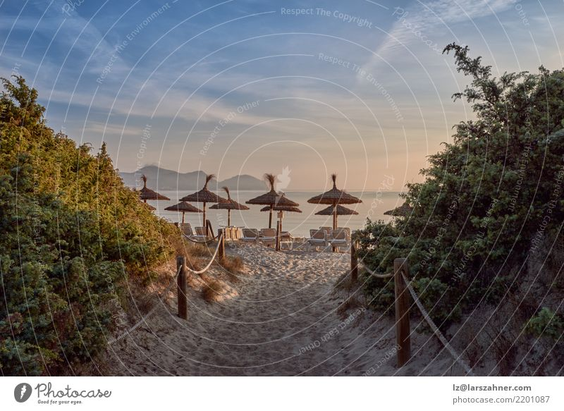 Tropical sunset on a resort beach Vacation & Travel Tourism Beach Ocean Sand Sky Lanes & trails Hideous Blue Orange Relaxation Serene Sunset Resort