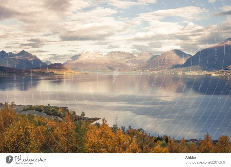Autumn mood, Scandinavia, Lofoten, Totale Harmonious Calm Adventure Landscape Clouds Mountain Fjord Lofotes Vacation & Travel Horizon Idyll Pure Far-off places