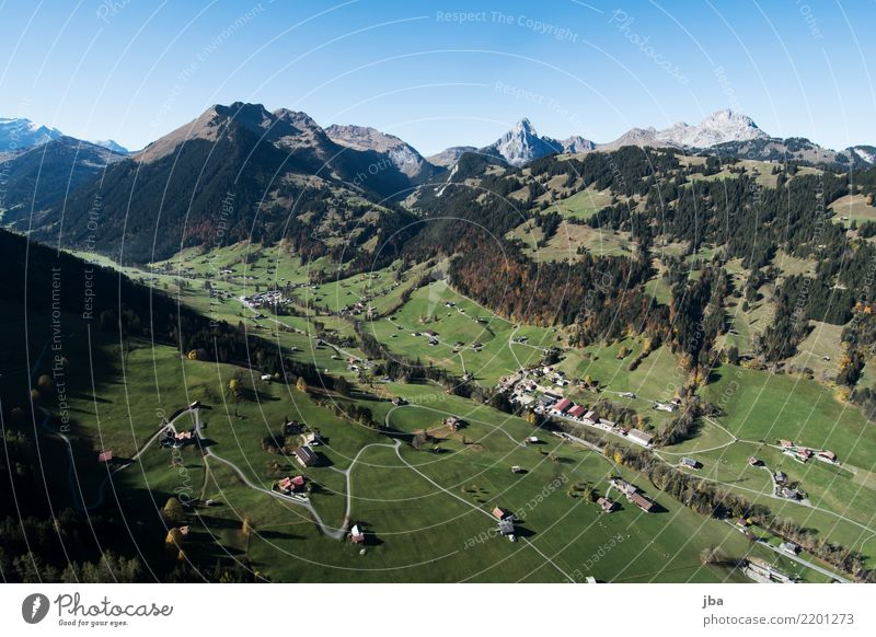 Reason near Gstaad in autumn Lifestyle Well-being Relaxation Calm Leisure and hobbies Trip Adventure Far-off places Freedom Mountain Hiking Sports Paragliding