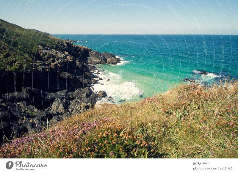 Nature Water Sky Flower Ocean Plant Far-off places Meadow Grass Landscape Coast Waves Weather Environment Horizon Rock
