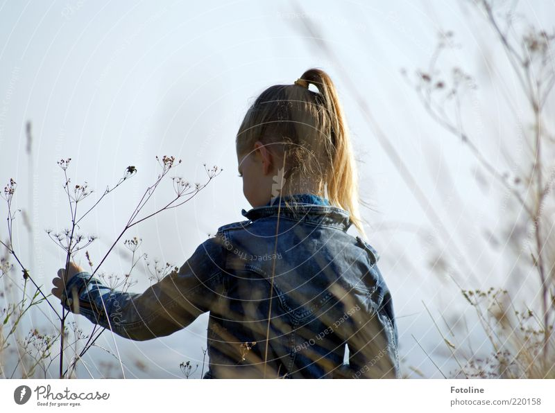 play in freedom Human being Feminine Child Girl Infancy Skin Head Hair and hairstyles Face Eyes Ear Back Arm Hand Fingers Environment Nature Plant Sky