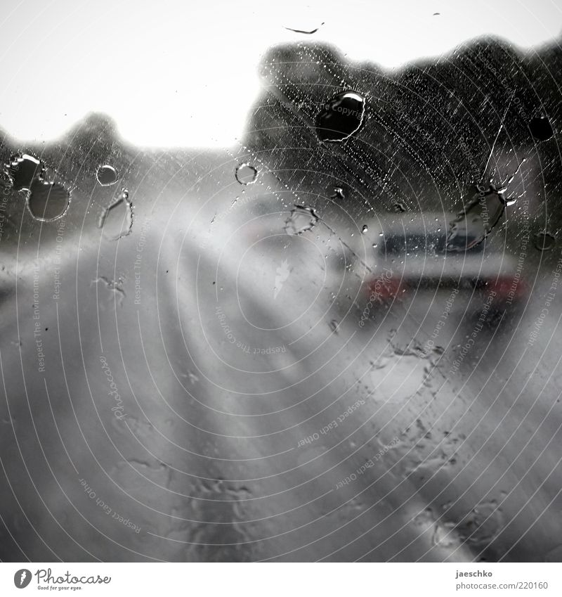 Street Dark Autumn Gray Car Rain Road traffic Weather Wet Drops of water Transport Speed Perspective Driving Highway Mobility