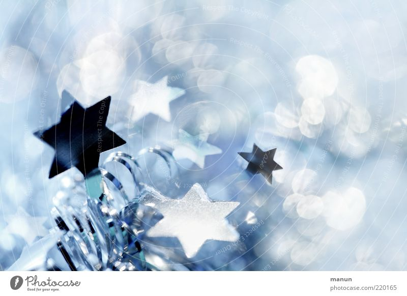 Christmas & Advent Blue Beautiful White Cold Emotions Exceptional Feasts & Celebrations Moody Bright Glittering Fresh Illuminate Decoration Happiness Fantastic