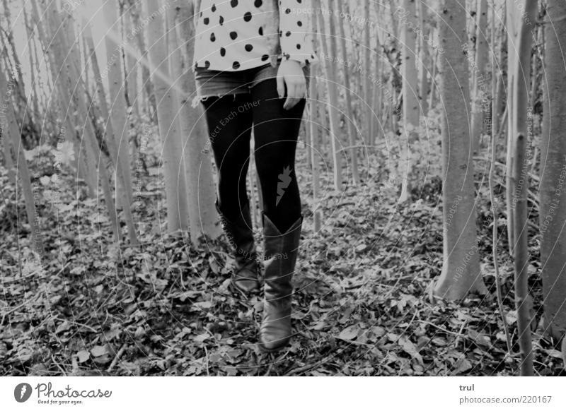Woman Human being Nature Hand Tree Leaf Adults Loneliness Forest Autumn Feminine Life Wood Legs Going