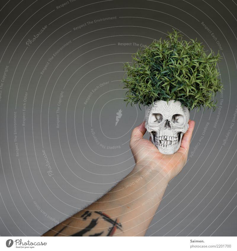 Sein Totenkopf Schädel Kopf Tod Leben Pflanze Kreislauf Arm Tattoo Tätowierung Gebiss Zähne halten denken Philosophie philosophieren Theater Drama dramatisch