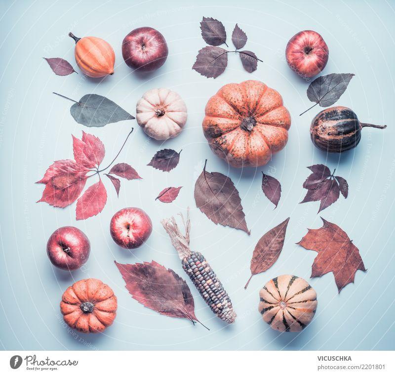 Autumn composing with pumpkin, apples and coloured foliage Style Design Decoration Thanksgiving Hallowe'en Nature Plant Leaf Retro Composing Still Life Pumpkin