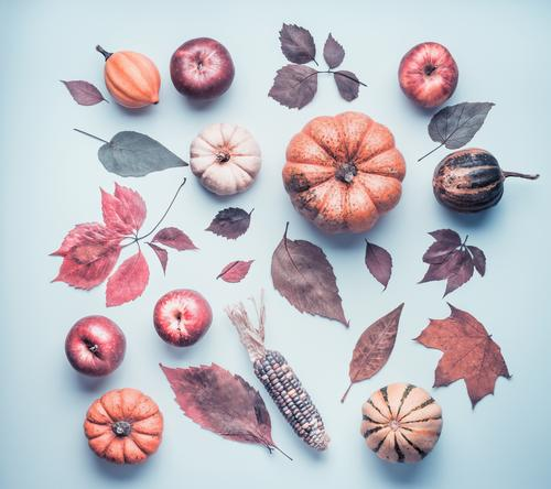 Nature Plant Leaf Autumn Style Design Retro Decoration Creativity Apple Still Life Autumnal Hallowe'en Pumpkin Ornament Thanksgiving